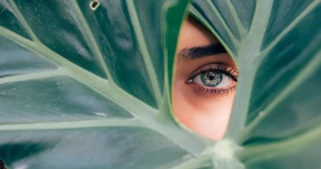 Curiosidades sobre os olhos e a visão órgão