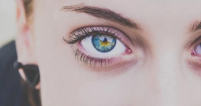 fatos sobre o olho humano