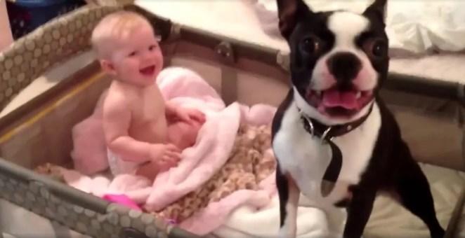 Cachorrinho se recusa a deixar o berço
