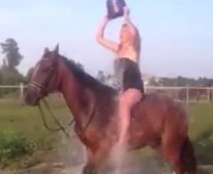 El Accidentado Reto del Ice Bucket Challenge sobre un Caballo