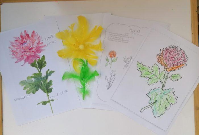 CRIZANTEMA-Activitati creative pentru copii