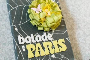 Mini Balade à Paris