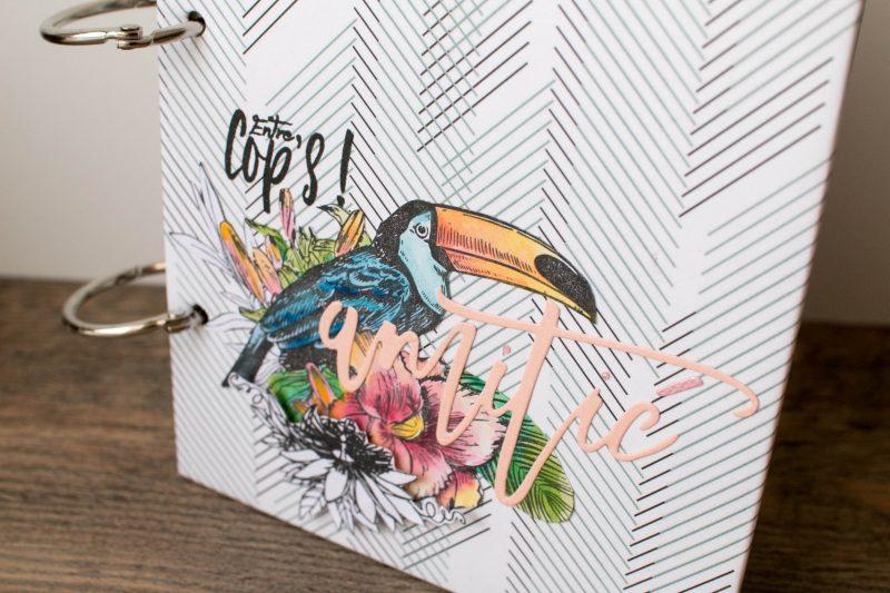 Mini album Entre cop's interco-53