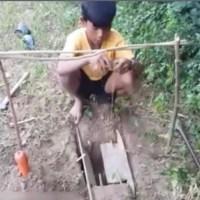VÍDEO: Original Trampa para coger conejos.