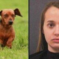 Detenida por grabar vídeo íntimo con su perro