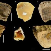 Los primeros buzos, los neandertales