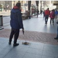 Saca a pasear un cangrejo con correa