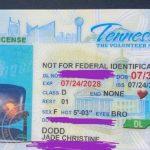 Recibe su licencia de conducir con la foto de una silla vacía