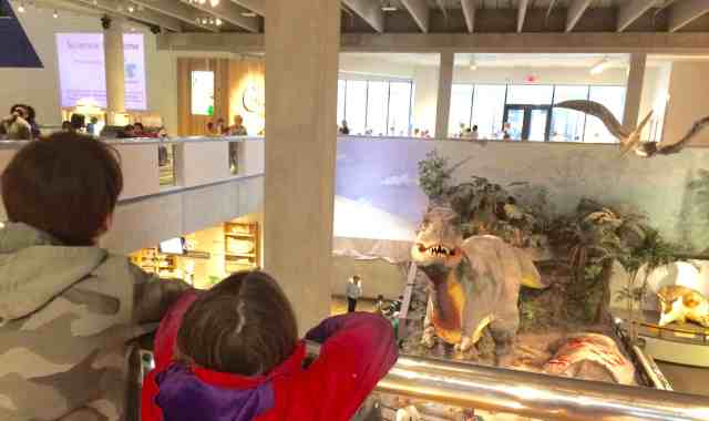 Science Museum Saint Louis, family fun in Saint Louis