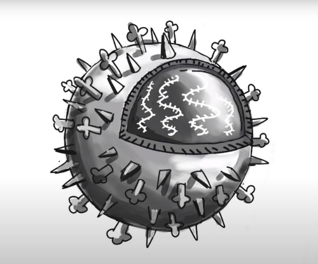 Pandemics in history and viruses.