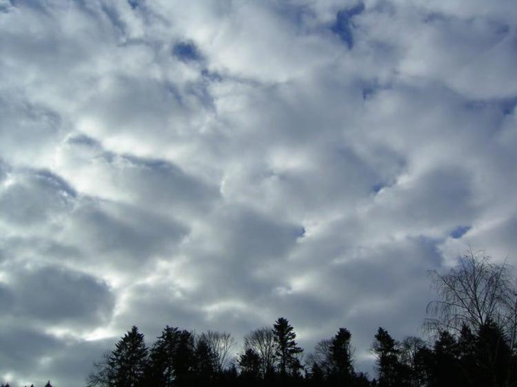 Sky completely covered by low - level cloud type called Stratocumulus