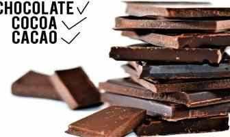 Questions and facts about chocolate and chemistry .