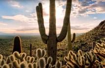 Desert formation.