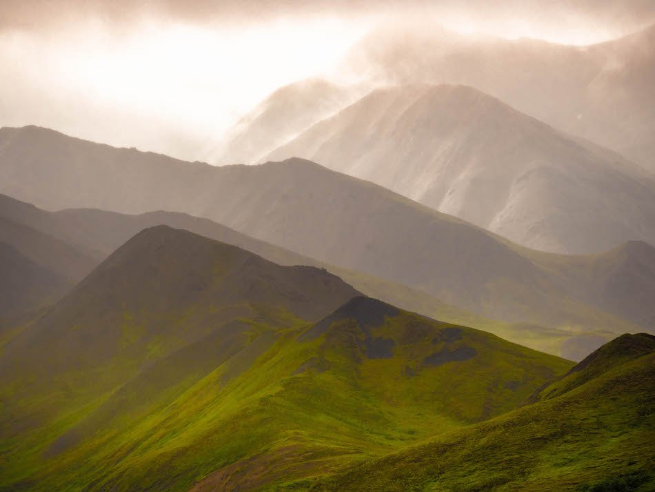 misty mountains in Denali National Park