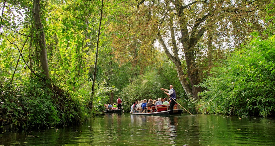 guided punt tour Spreewald Biosphere UNESCO
