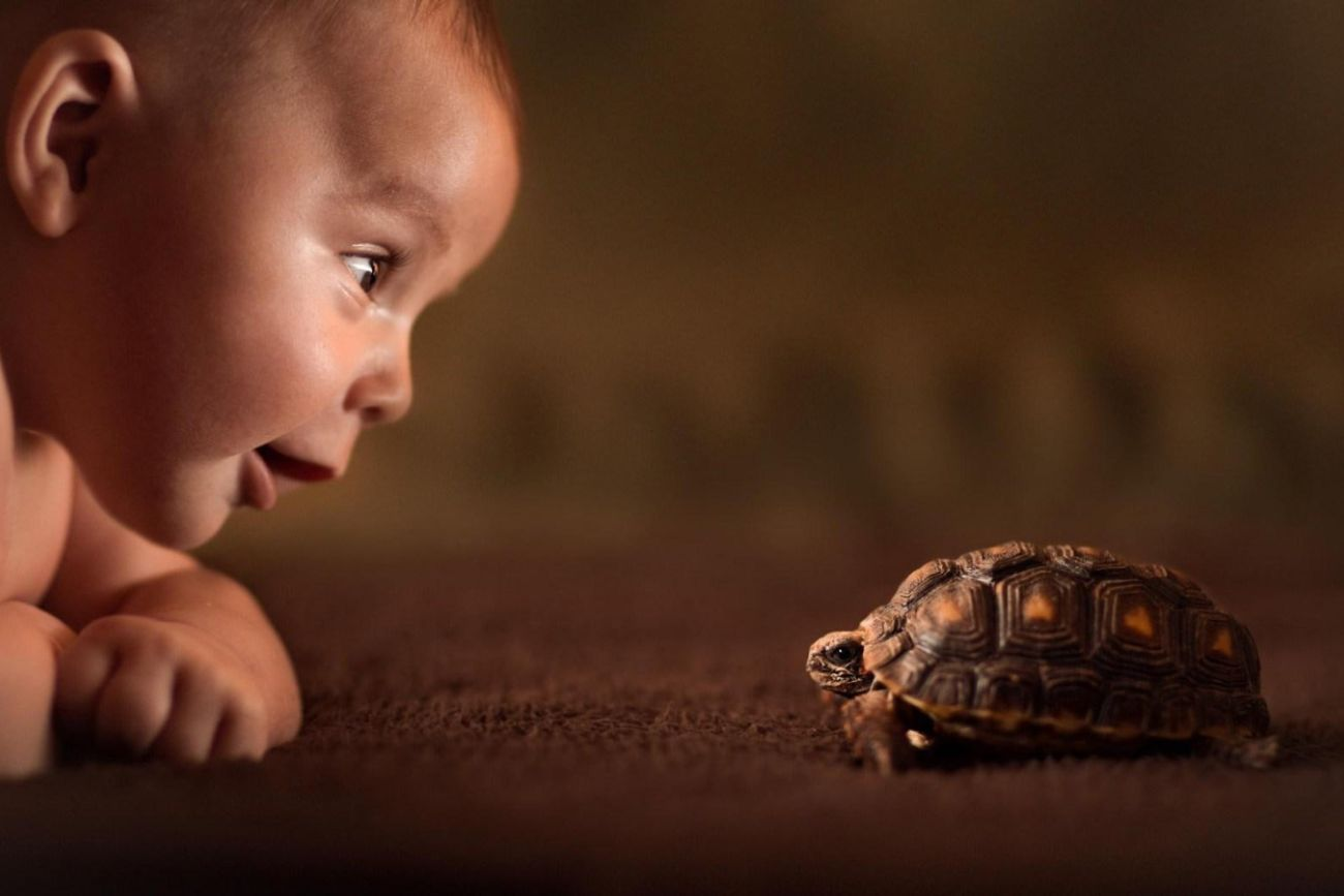 baby with turtle