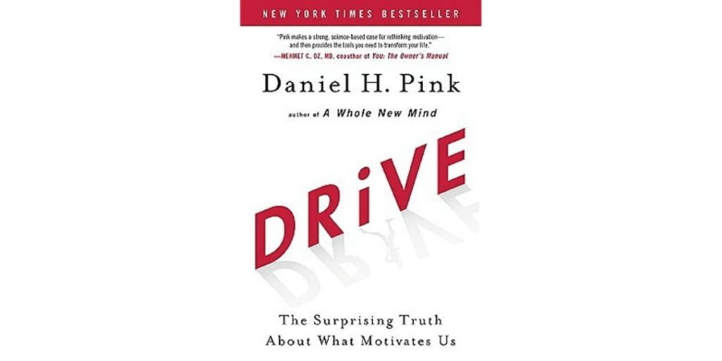 drive book summary