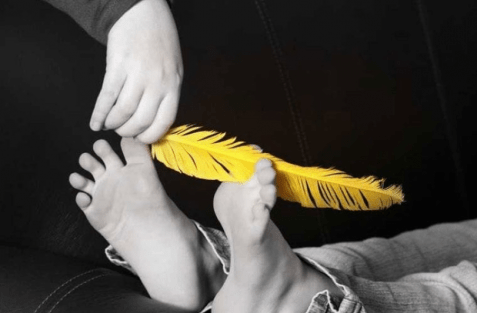 tickling feather