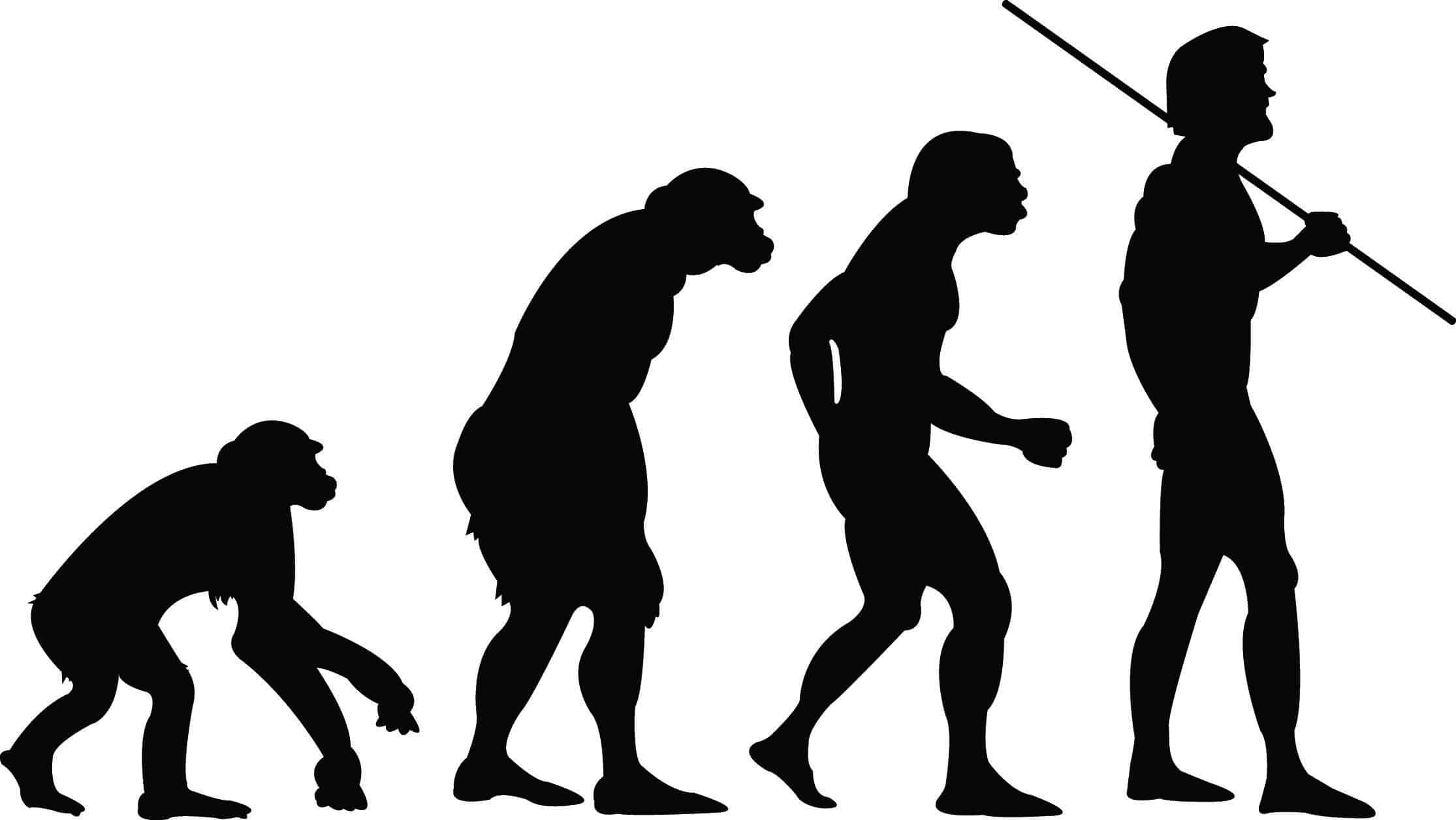 Cual Es La Diferencia Entre Microevolucion Y Macroevolucion Curiosoando