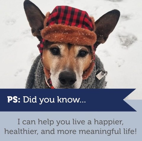 PETS – 🇨🇦 CURIOUS ABOUT CANADIAN CONTESTS