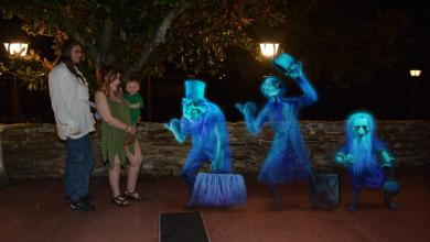 Photo of Our DIY MNSSHP Family Peter Pan Costumes