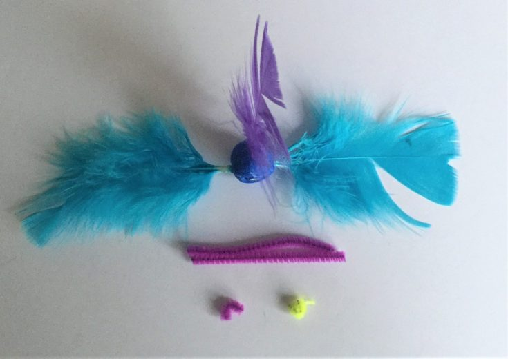 Feathered bird crafts for kids - Step 4