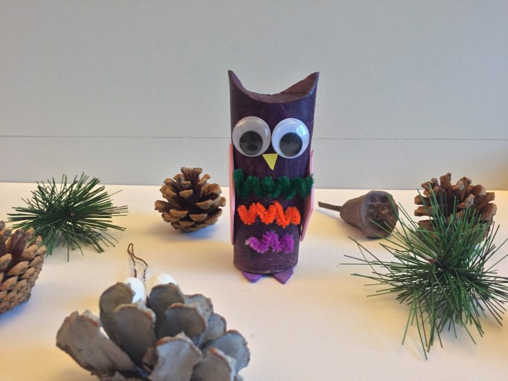 Toilet Paper Roll Owls model 4 - Toilet paper roll owls - an Owlsome craft for kids