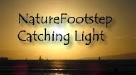 Catching light 140706 P9160328 130916 honolulu ljus