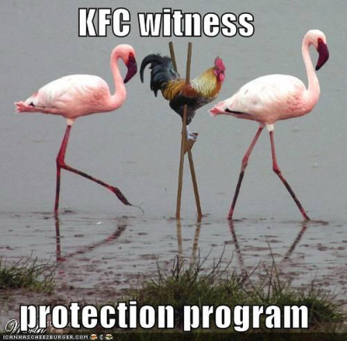 kfc-witness-protection-program
