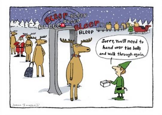 reindeer sleighport security