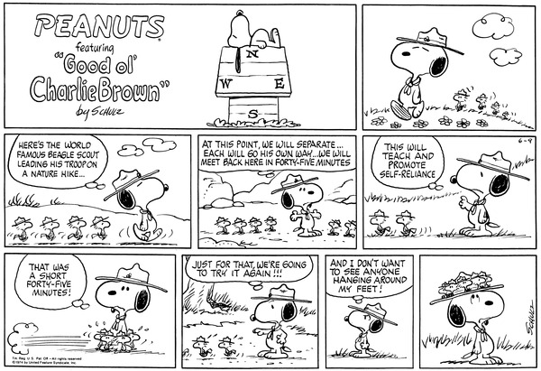 snoopy scout leader
