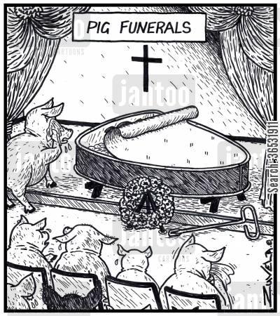 Pig funerals.