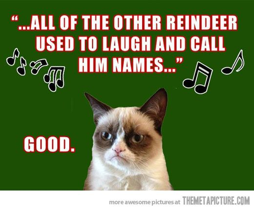 fs-12-xx-2016-grumpy-cat-other-reindeer-called-him-names