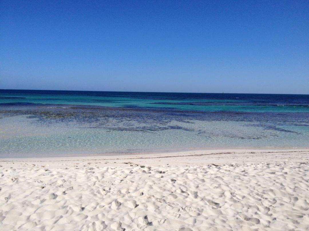Day Trips from Perth Rottnest Island