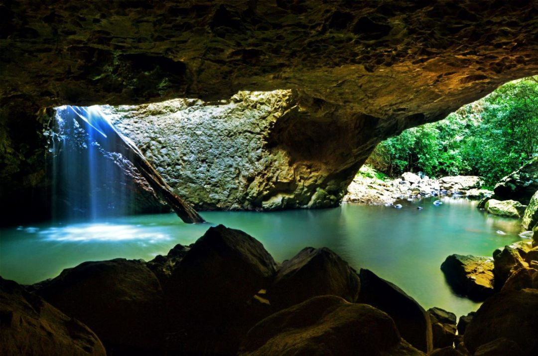 glow worm caves at Natural Bridge