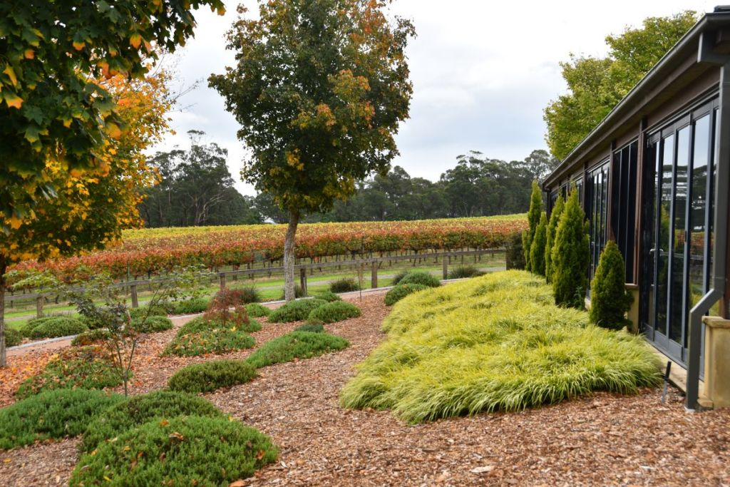 Things to do in Bowral – From Cricket to Cafes