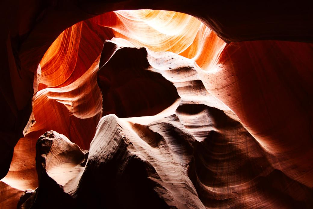 The Bear in Antelope Canyon