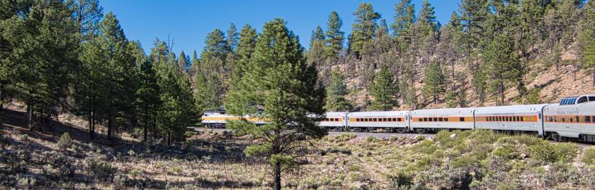 Grand Canyon Express in the pines