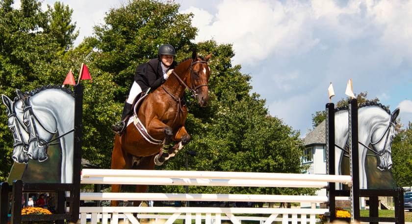 Curious Craig - Horse-Jump.jpeg