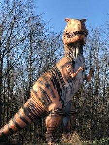 Kentucky - T-Rex.