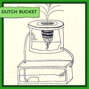 indoor gardening method - Dutch Bucket