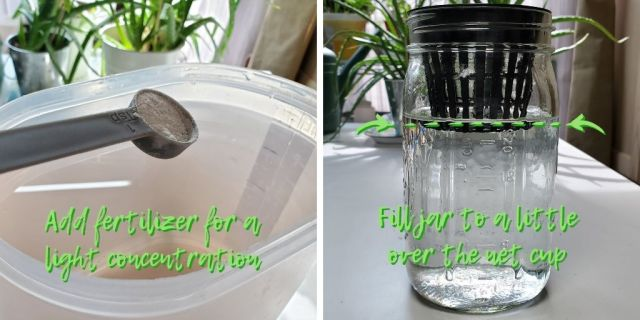 Shows adding fertilizer to a mason jar just above the bottom of the net cup