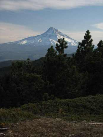 Mt Hood seen from atop Green Point Mtn