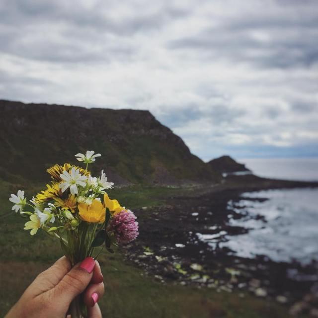 Picking wildflowers while walking along this stunning coastline NorthernIreland GiantsCausewayhellip