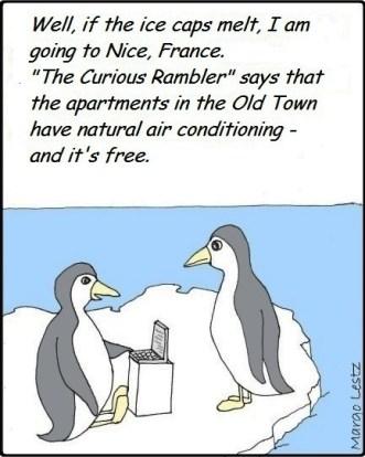 penguins Curious Rambler nice france air conditioning