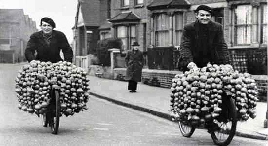 brittany-onion-johnnies-1-cmp.jpg?resize