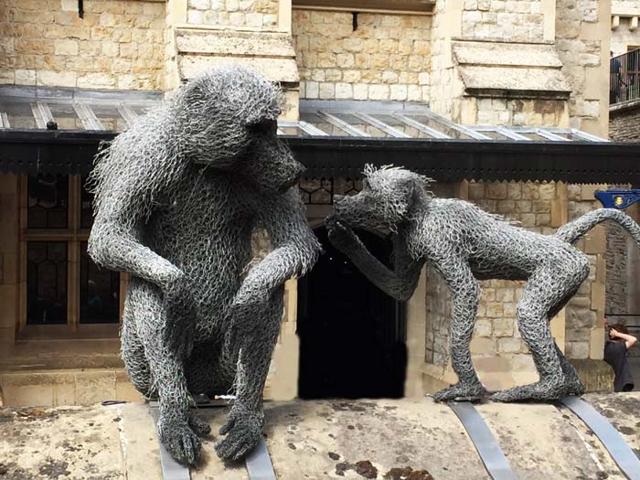 Monkeys at the Tower