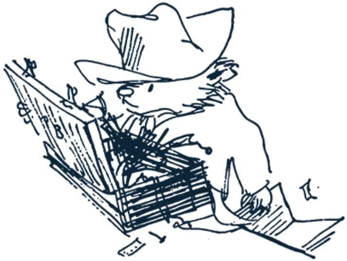Paddington drawing