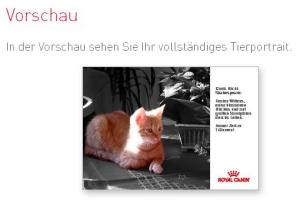 Gimli Royal Canin
