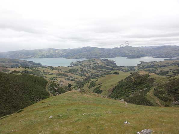 On a rainy day towards Akaroa